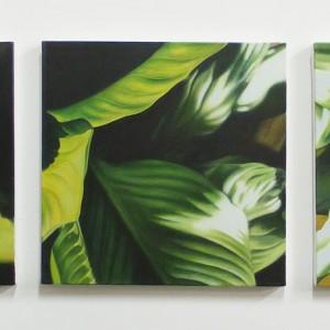 Triptyque de plantes